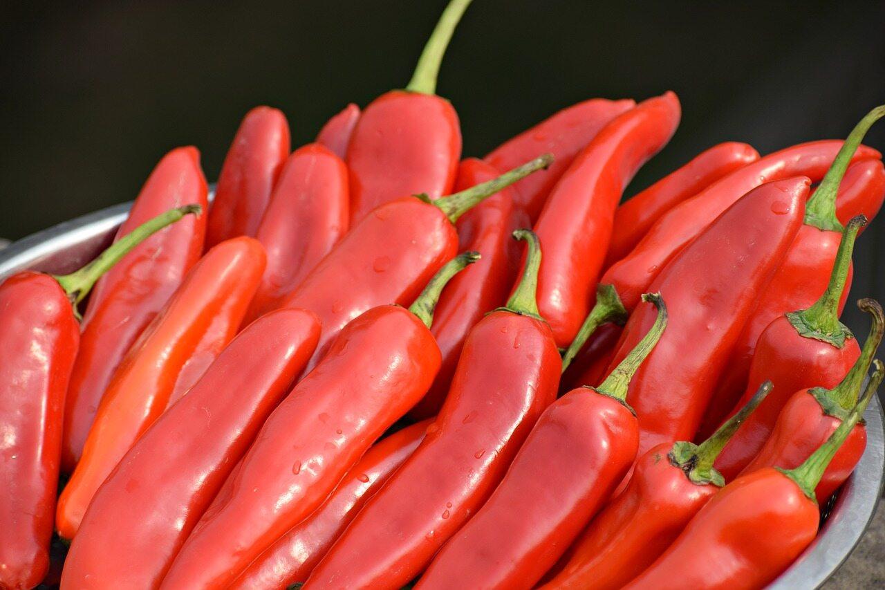 Dieta arbuzowa – zasady, przepisy, opinie - sunela.eu