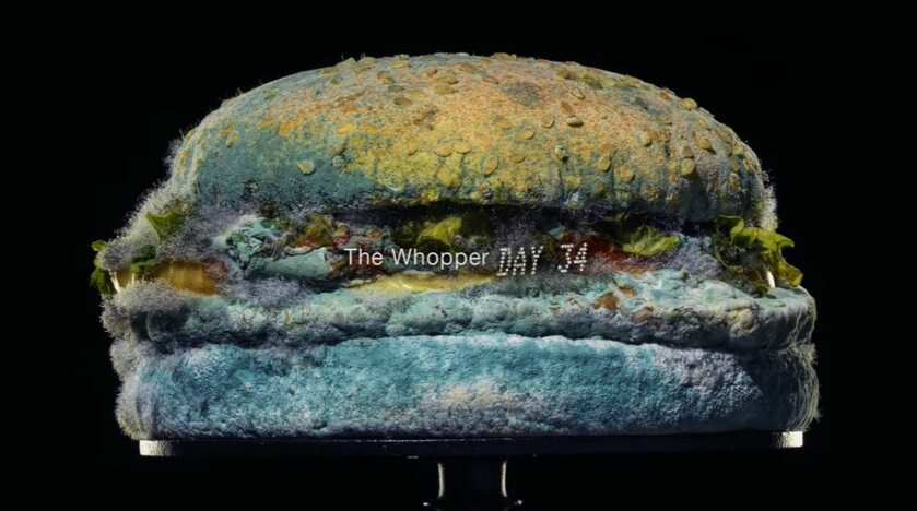 """The Moldy Whopper"""